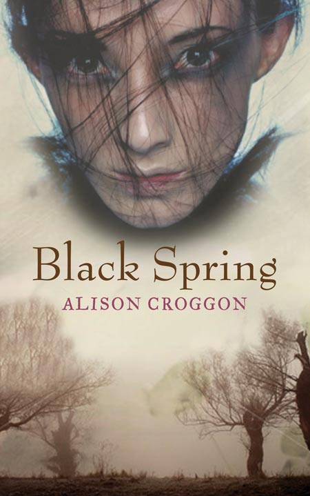 Image result for book cover black spring